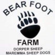 Bearfootfarm